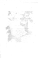 231 페이지