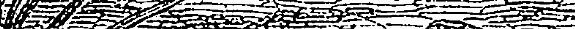 [ocr errors][ocr errors][subsumed][subsumed]