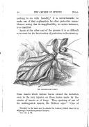 40 페이지