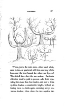 27 페이지