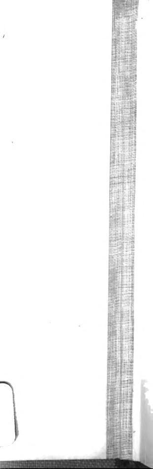 [merged small][merged small][merged small][graphic][graphic]