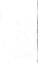 ii 페이지