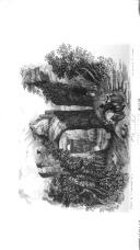 194 페이지