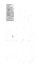 32 페이지