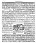 335 페이지
