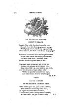 278 페이지