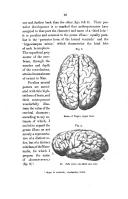 26 페이지