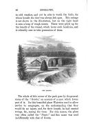 68 페이지