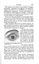 591 페이지