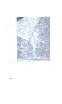 318 페이지